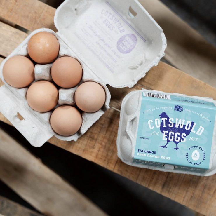 Costolds Eggs